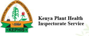 Kenya plant